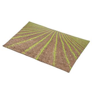 トウモロコシ畑 ランチョンマット