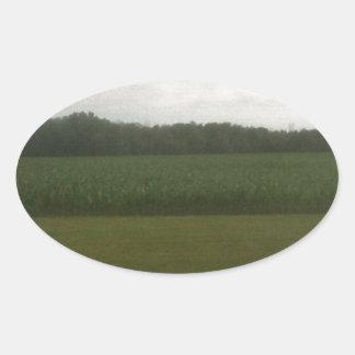トウモロコシ畑 楕円形シール