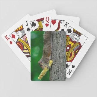 トウモロコシ穂軸のカジノカードを持つリス トランプ