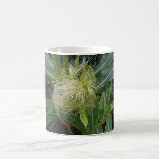 トウモロコシ コーヒーマグカップ