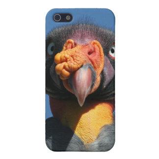 トキイロコンドル例の精通したiPhone 5の場合 iPhone 5 Cover