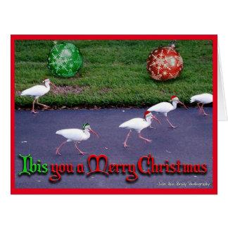 トキ亜科メリークリスマス カード