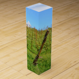 トスカナ式のブドウ園 ワインギフトボックス