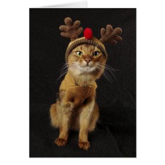 トナカイのゲームソマリ族猫の休日 カード