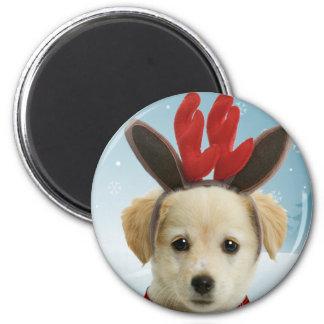 トナカイの子犬のクリスマスの磁石 マグネット