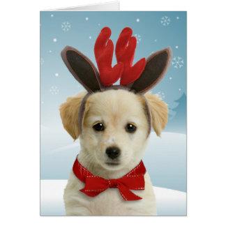 トナカイの子犬のクリスマスカード カード
