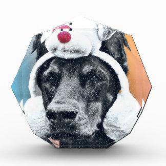 トナカイの帽子を身に着けている犬 表彰盾