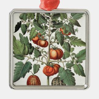 トマトおよびメロン: 1.Poma amorisのfructuのluteo; 2 メタルオーナメント