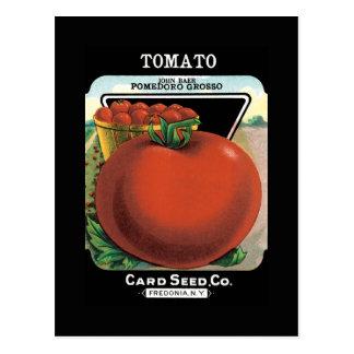 トマトの種の包み ポストカード