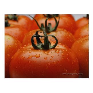 トマト2のクローズアップ ポストカード