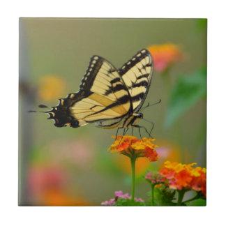 トラのアゲハチョウの蝶 タイル