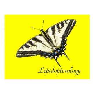 トラのアゲハチョウの蝶Lepidopterology ポストカード
