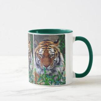 トラの凝視 マグカップ