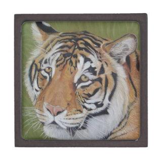 トラの大きな猫の野性生物の現実主義者の芸術のギフト用の箱 ギフトボックス