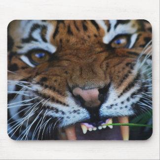 トラの牙は閉まります マウスパッド