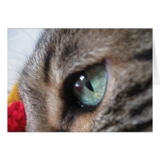 トラの目 カード