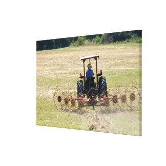 トラクターの収穫を運転している若い男の子 キャンバスプリント