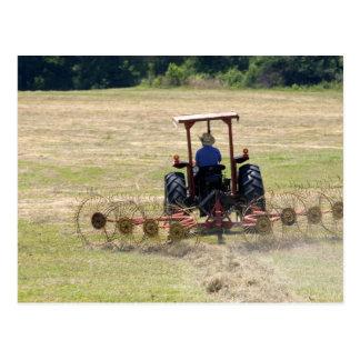 トラクターの収穫を運転している若い男の子 ポストカード