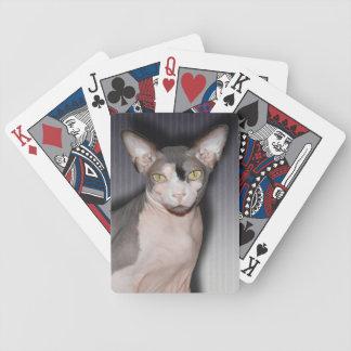 トランプ| Sphynx猫の忍者 バイスクルトランプ
