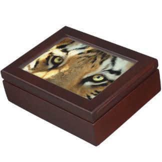 トラ1 -記念品箱 ジュエリーボックス