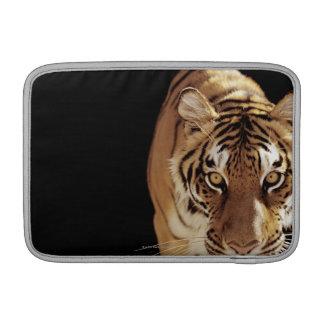 トラ(ヒョウ属チグリス川) MacBook スリーブ