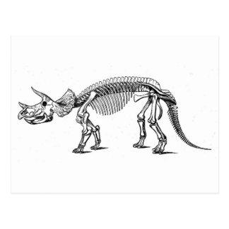 トリケラトプス2 ポストカード