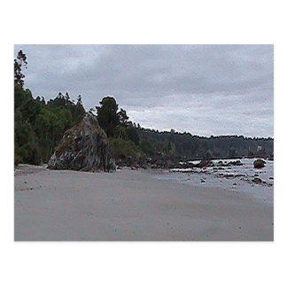 トリニダードのビーチ ポストカード