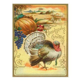 トルコのカボチャトウモロコシのブドウのAppleの三角波 ポストカード