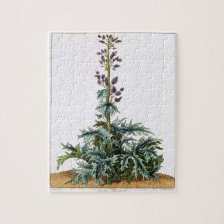 トルコの大黄植物 ジグソーパズル