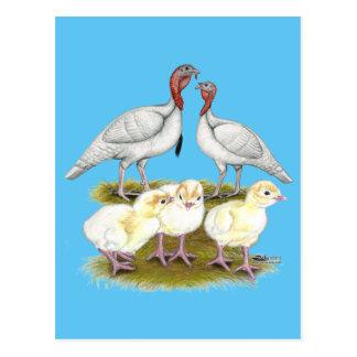 トルコの小型白い家族 はがき