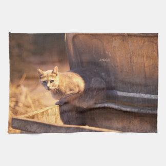 トルコ猫の台所タオル キッチンタオル