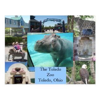 トレドの動物園 ポストカード