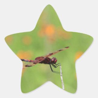 トンボおよびオレンジ花 星シール