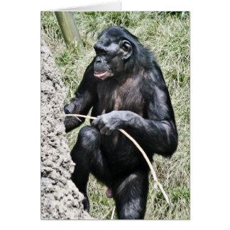 トーマス・エジソンの引用文を励ますチンパンジーの写真w カード