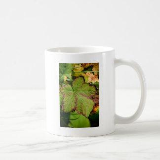 ドアのcty第2一見11 It.jpg コーヒーマグカップ