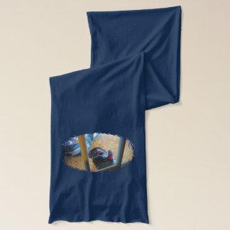 ドアを見るトルコ スカーフ