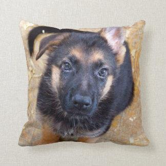 ドイツのシェパードの子犬の枕 クッション