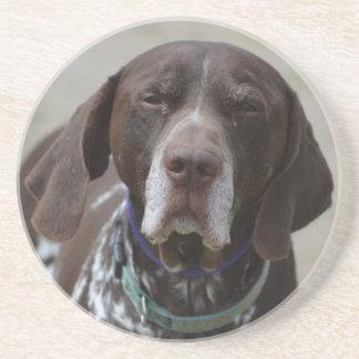 ドイツShorthairedポインター犬 コースター