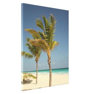 ドミニカ共和国のココヤシの木の熱帯ビーチ キャンバスプリント