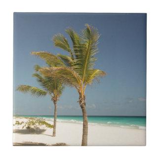 ドミニカ共和国の熱帯ビーチ タイル