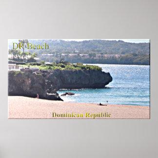 ドミニカ共和国はポスターを浜に引き上げます ポスター