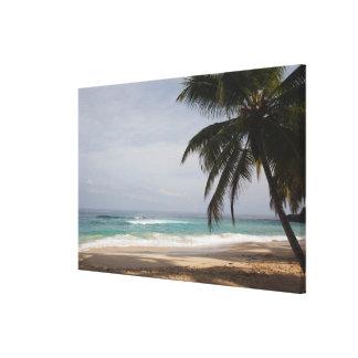 ドミニカ共和国、北岸、アブレウ、Playa キャンバスプリント
