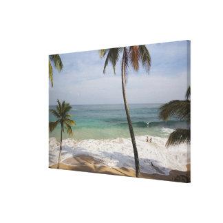 ドミニカ共和国、北岸、アブレウ、Playa 3 キャンバスプリント