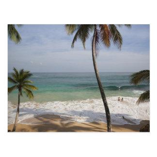 ドミニカ共和国、北岸、アブレウ、Playa 4 ポストカード