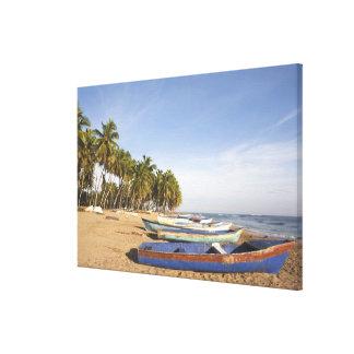 ドミニカ共和国、北岸、Nagua、Playa キャンバスプリント