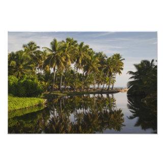 ドミニカ共和国、北岸、Nagua、Playa フォトプリント