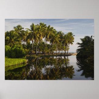 ドミニカ共和国、北岸、Nagua、Playa ポスター