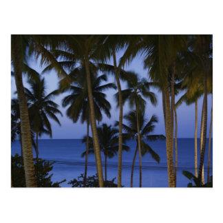 ドミニカ共和国、Samana半島、Las ポストカード