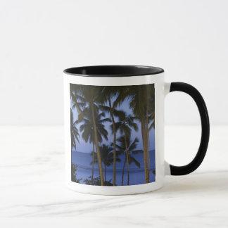 ドミニカ共和国、Samana半島、Las マグカップ