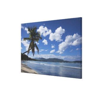 ドミニカ共和国、Samana半島、Las 4 キャンバスプリント